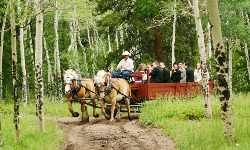 Estes Park Carriage Ride