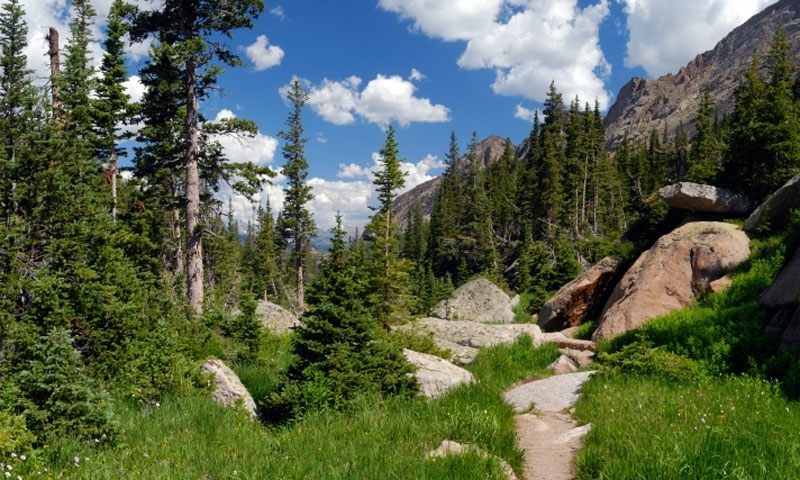 Hiking Trail in Rocky Mountain National Park
