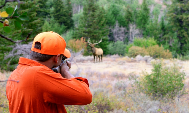 Interesting Research on Hunting – What You Didn't Know
